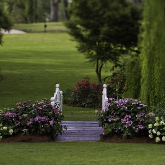 dieser sommer wird endless chic pflanzencenter warnken. Black Bedroom Furniture Sets. Home Design Ideas