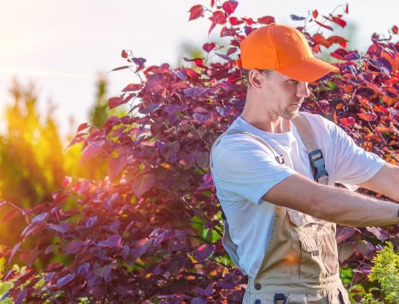 Gartenlandschaftsbauer