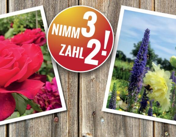 Banner-nimm3zahl2_okt