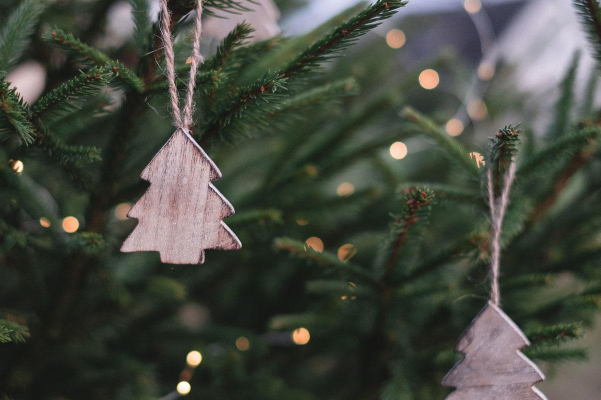 Weihnachtsbaumspende für Kitas und Kindergärten